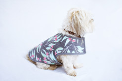 Quilted Dog Jacket