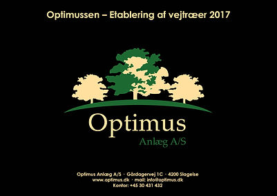 Optimussen efterår 2016