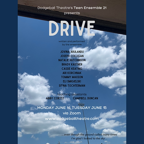 Copy of DRIVE.png