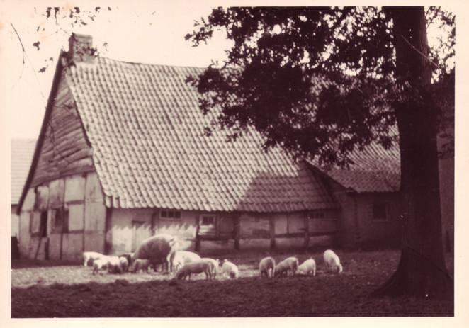 Alte Zeiten 035.jpg