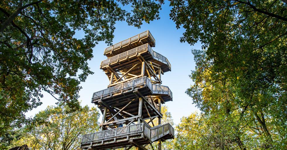 Turm_Mordkuhlenberg-8740-19-malopo.jpg
