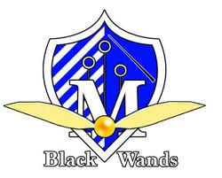 Montpellier Black Wands Quidditch