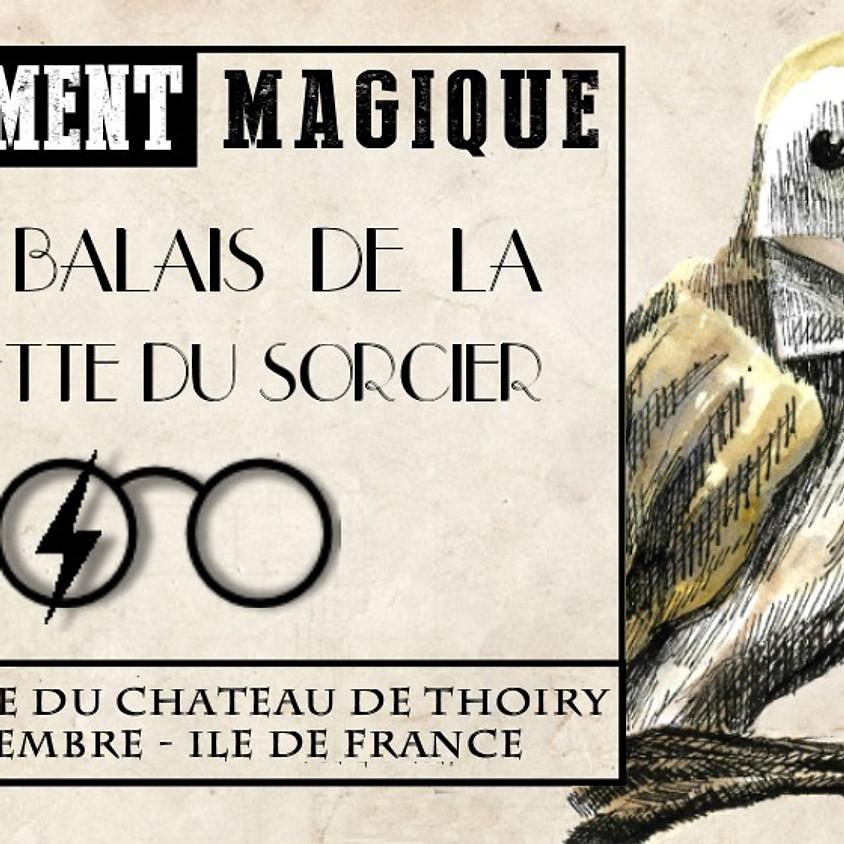 20 Balais de la Gazette du Sorcier