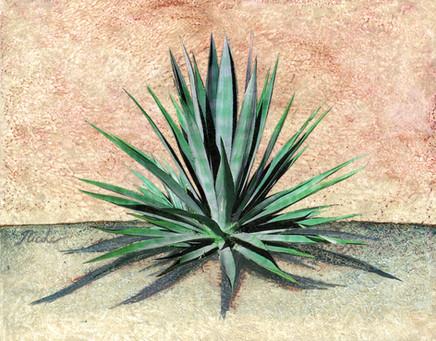 Cactus 3 4600.jpg