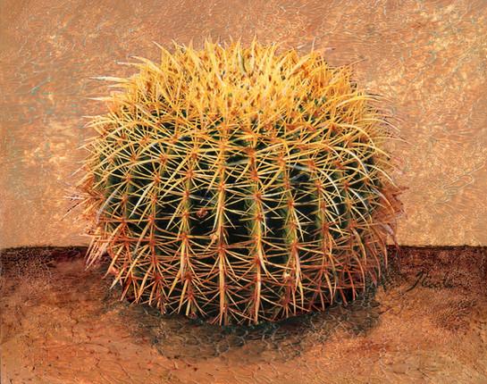 Cactus 4 4600.jpg