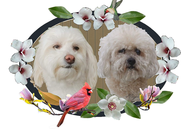 Large Animal Portrait Plaque Custom Commission
