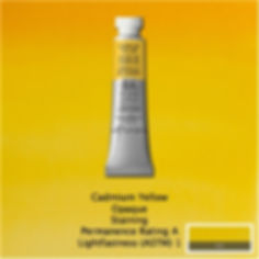 Winsor and Newton Cadmium Yellow Professional Watercolour