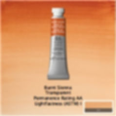 Winsor and Newton Burnt Sienna Professional Watercolour