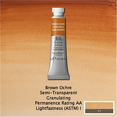 Winsor and Newton Brown Ochr Professional Watercolour