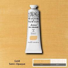 Gold Pro_Fotor.jpg