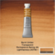 Winsor and Newton Burnt Umber Professional Watercolour