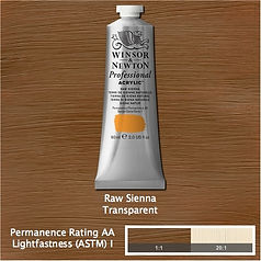 Winsor and Newton Raw Sienna Professional Acrylic