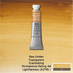 Winsor and Newton Raw Umber Professional Watercolour