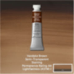 Winsor and Newton Vandyke Brown Professional Watercolour