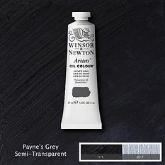 Payne's Grey Pro_Fotor.jpg
