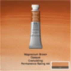 Winsor and Newton Magnesium Brown Professional Watercolour