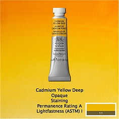 Winsor and Newton Cadmium Yellow Deep Professional Watercolour