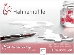 HAH6.jpg
