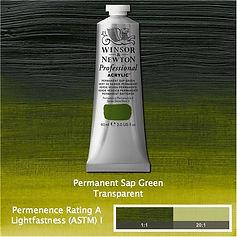 Winosr and Newton Permanent Sap Green Professional Acrylic