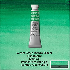 Winsor and Newton Winsor Green Yellow Shade Professional Watercolour