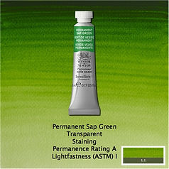 Winsor and Newton Permanent Sap Green Professional Watercolour
