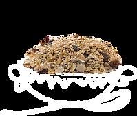cous cous bulgur quinoa granel