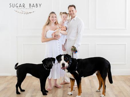 Newborn w/ Family