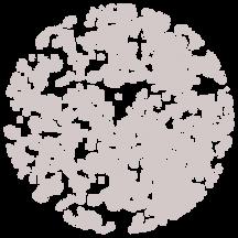 arbórea textura cana cachaça