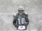 DESEAN JACKSON EAGLES SNOW PHOTO #2