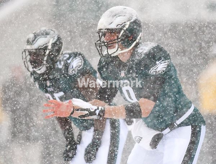 NICK FOLES LESEAN MCCOY PHILADELPHIA EAGLES SNOW 8X10 PHOTO MUST SEE!!