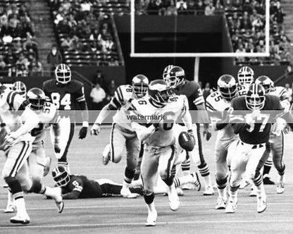 HERM EDWARDS MIRACLE AT THE MEADOWLANDS #6