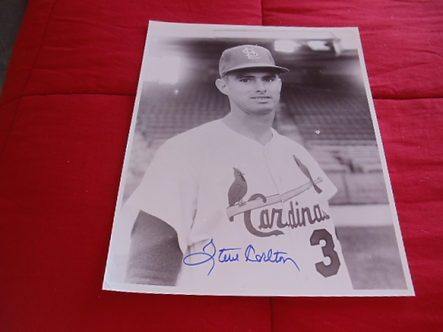 Steve Carlton St Louis Cardinals Phillies autographed vintage 11x14 photo HOF