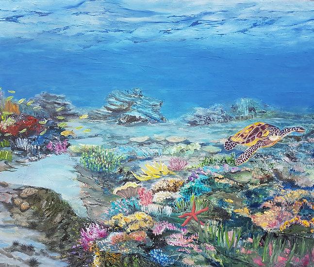 Untouched corals (3)
