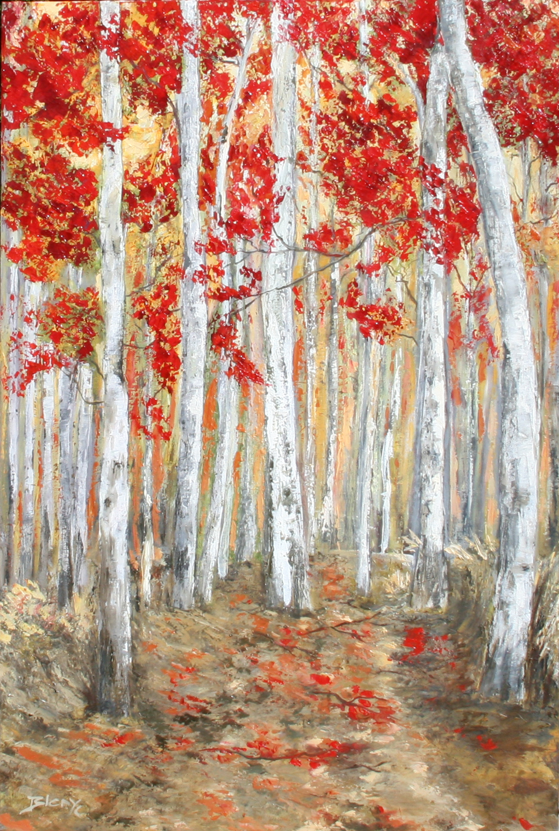 Red birch trees - sold