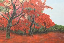 Flourishing tree - sold