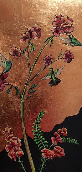 Hummingbirds picking