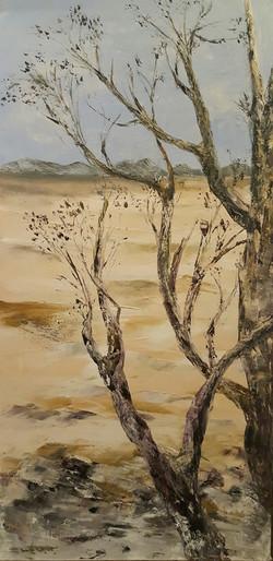 The arid tree sold
