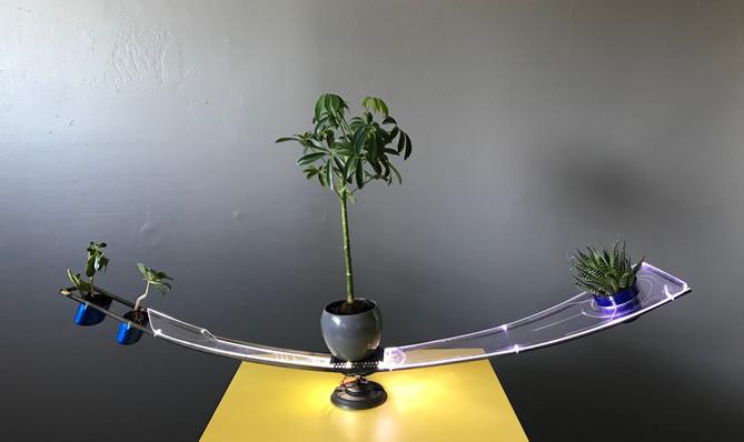 Copy of Plant Portal