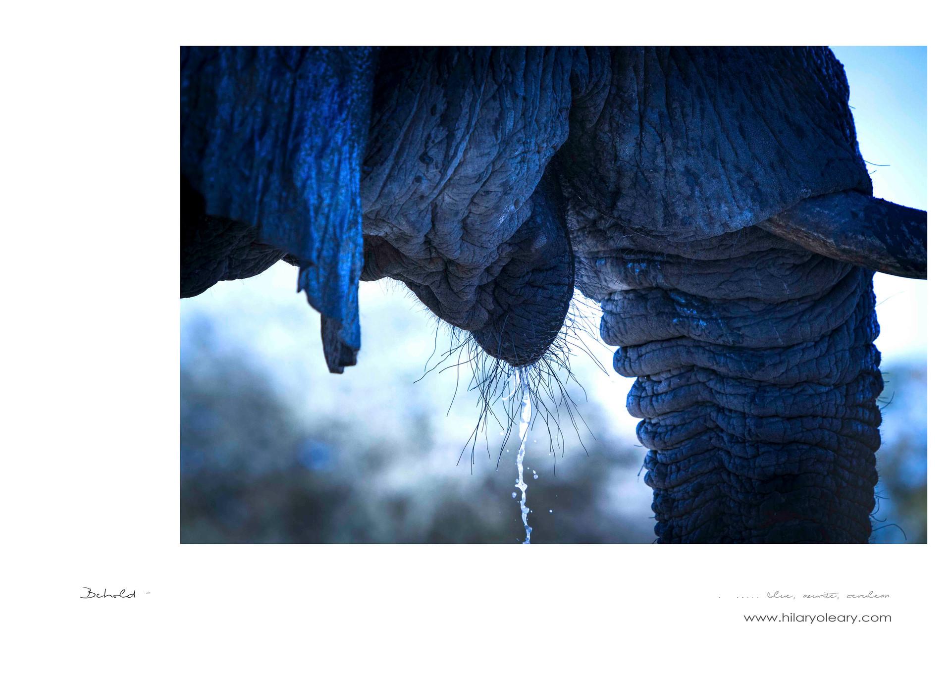 15 Blue Elephant.jpg