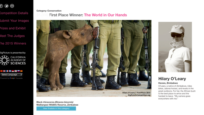 Big Picture Natural World Photography Winner - Conservation Award