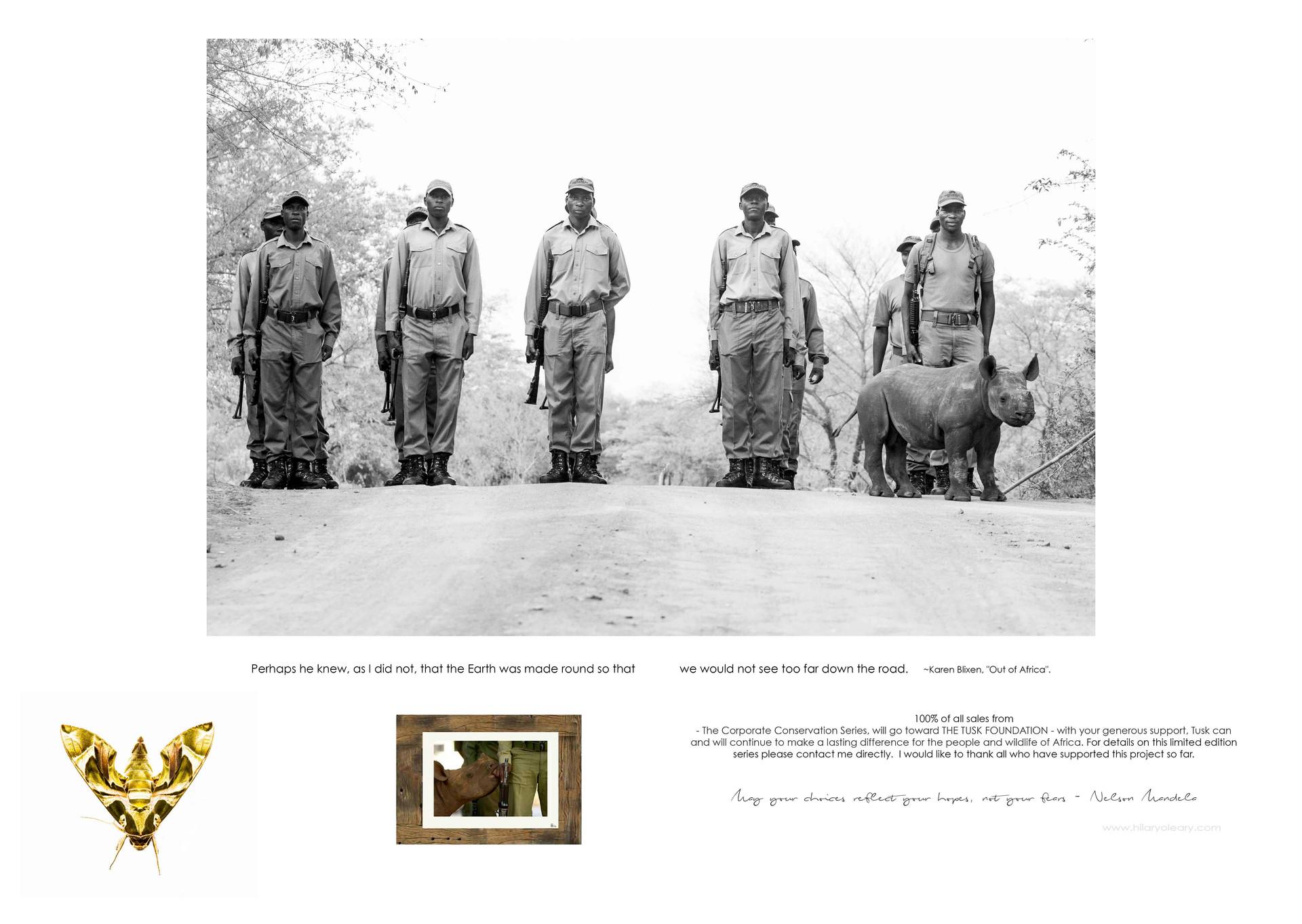 31 rhino conservation.jpg