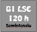B1 SEMINTENSIU.png