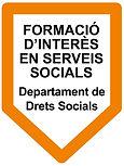 Logotip FISS DSO - versió COLOR.jpg