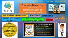 FORMACIÓ_ONLINE_AUELS_-10.png