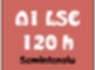 A1 LSC.png