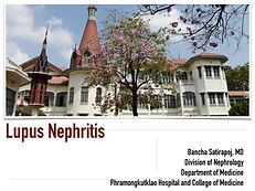 Lupus nephritis-1.jpg