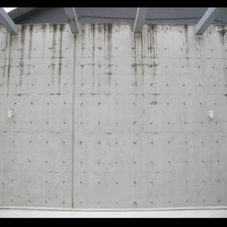 이끼끼는 벽 Moss wall fitting