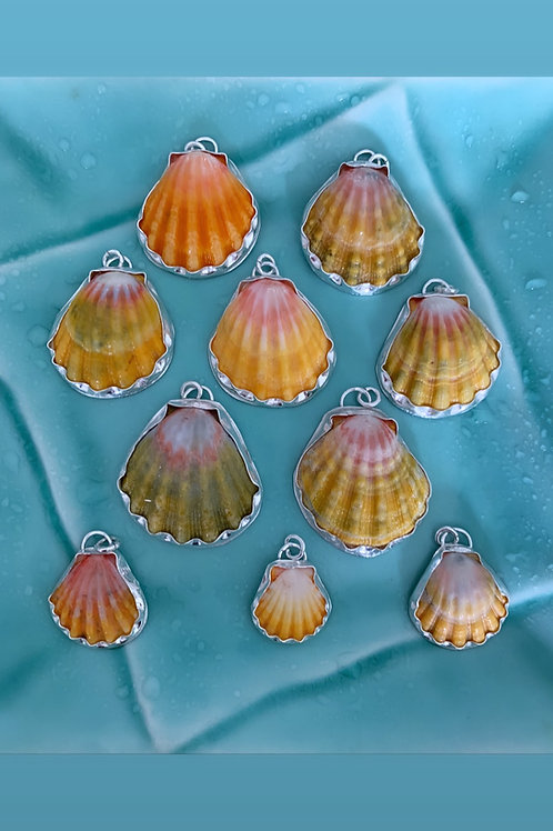 Large Sunrise Shell Necklace