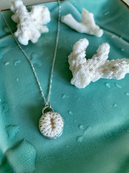 New Mini Coral Necklace