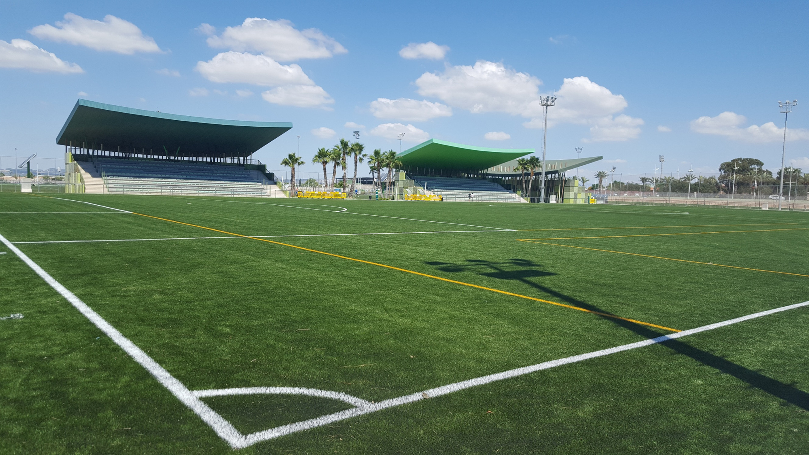 Pro and Amateur Football Training Camps